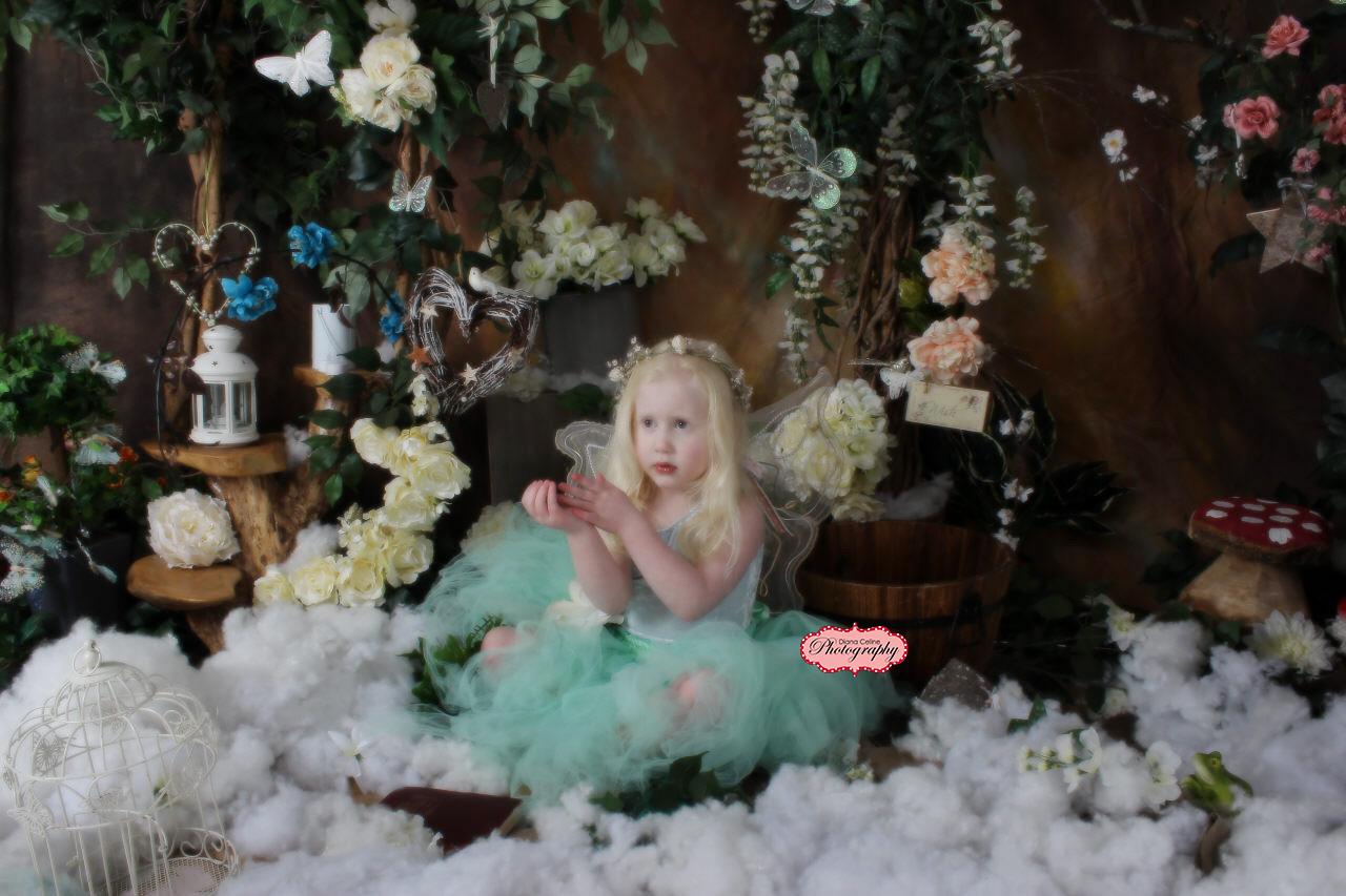 winter fairies 2015 391